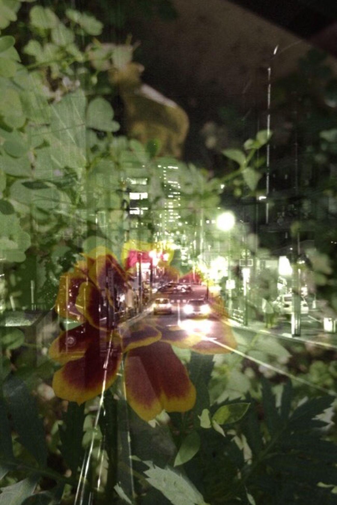 Streamzoo Streamzoofamily Tokyo,Japan Monochrome Streetphotography Mixed お疲れ〜〜〜(^∇^)