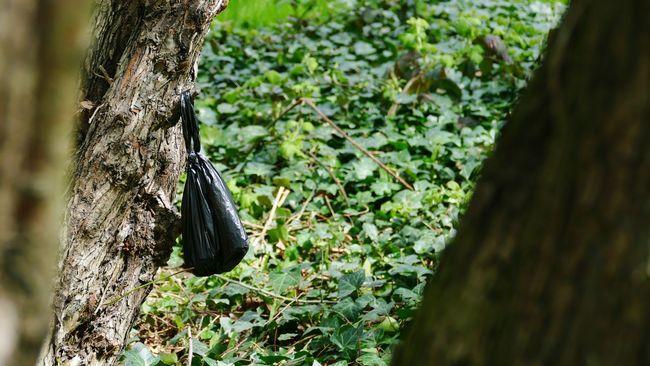 'Repulsive' Poo Dog Poop Dog Poo Dog Poo Bags Heath Hampstead Heath Nature Litter Waste -- B