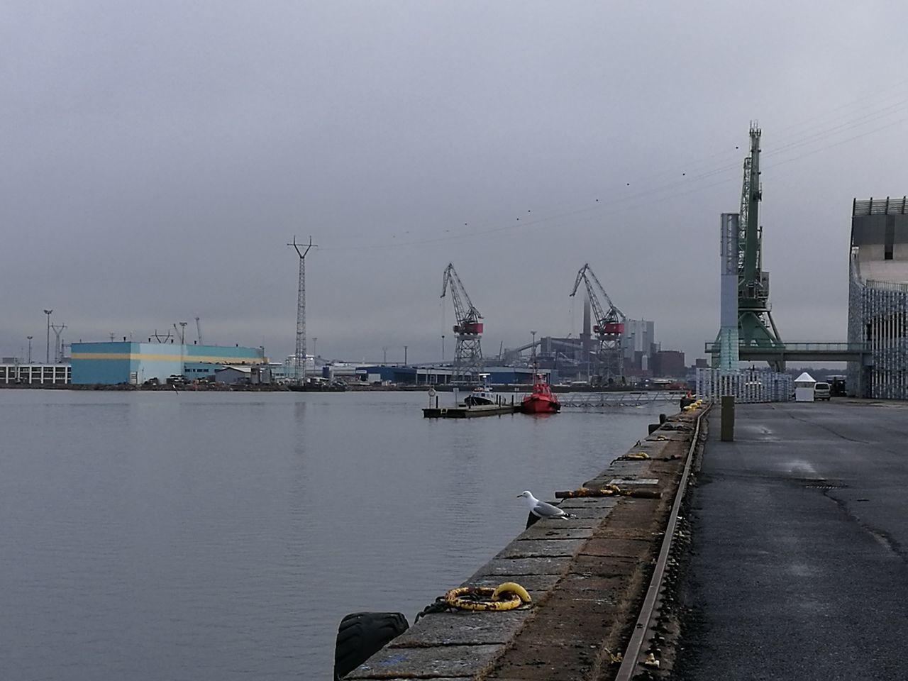 Kotka, Finland Harbor Seagull Seaside HuaweiP9