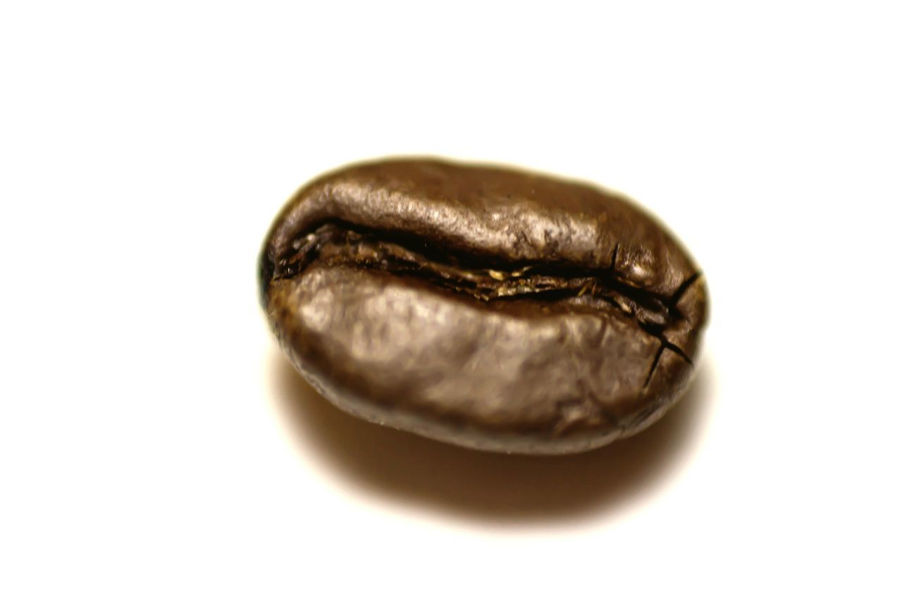 Close-up White Background Studio Shot No People Coffee Bean Macro Photography Macro Coffee