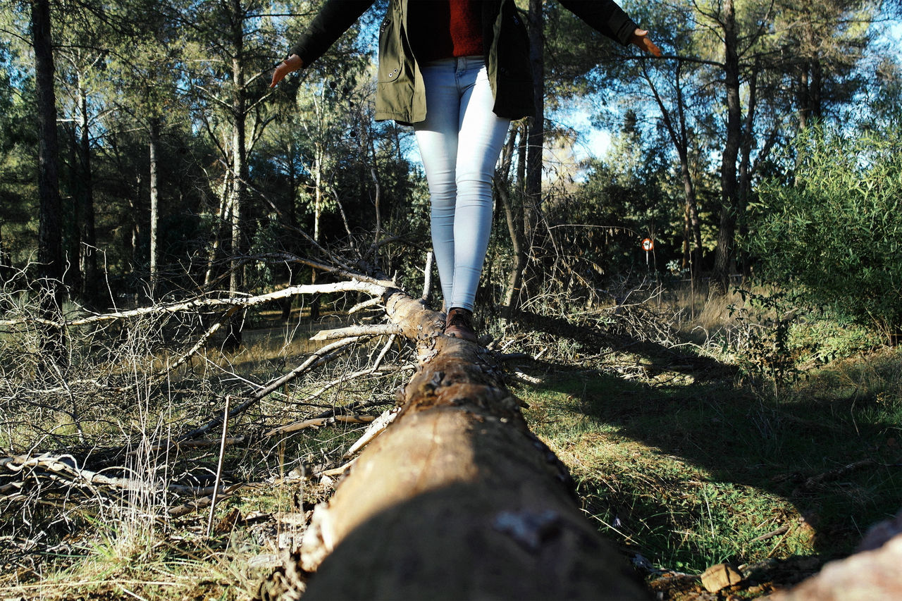 Adult Adults Only Close-up Day Fallen Tree Hiking Human Body Part Human Hand Human Leg Leisure Activity Low Section Nature One Person Outdoors People Real People Shadow Standing Sunlight Tree Trees