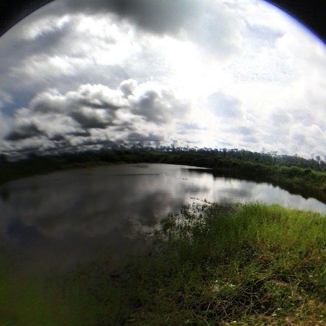 the spot. Castandrealese Snakeheadanglin Seek &deploy Bruneifishing
