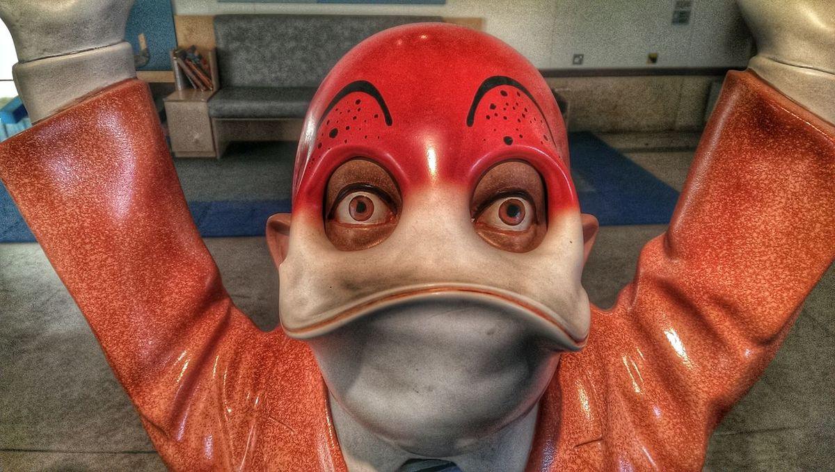 Duck Face Art Interesting Pieces Exhibition