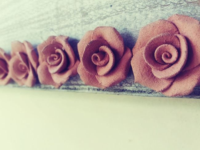 Color Palette Taking Photos Roses Object Focus Object Photography Nothingisordinary_ Check This Out