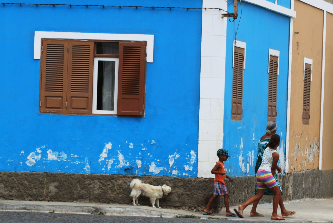 Architecture Blue Building Exterior Capo Verde Children Dog Domestic Animals One Animal Outdoors Real People Sal Island Santa Maria Street Photography Summer 2015 Walking Window