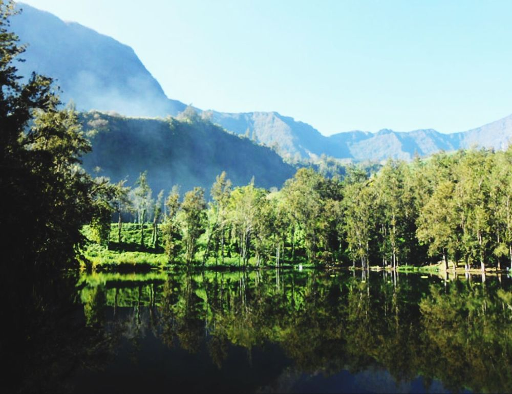 Salazie Reunion Island Nature