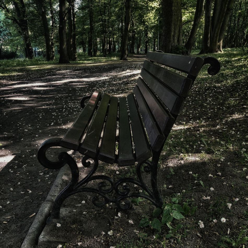 Hanging Out Park Spacer Relaxing ławka Odpoczynek Bench Wiosna Nice Day