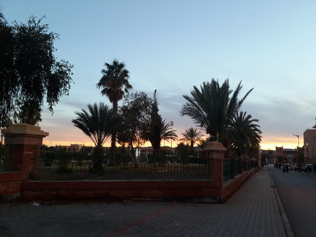 tree, outdoors, sky, palm tree, architecture, building exterior, clear sky, no people, water, sunset, nature, day