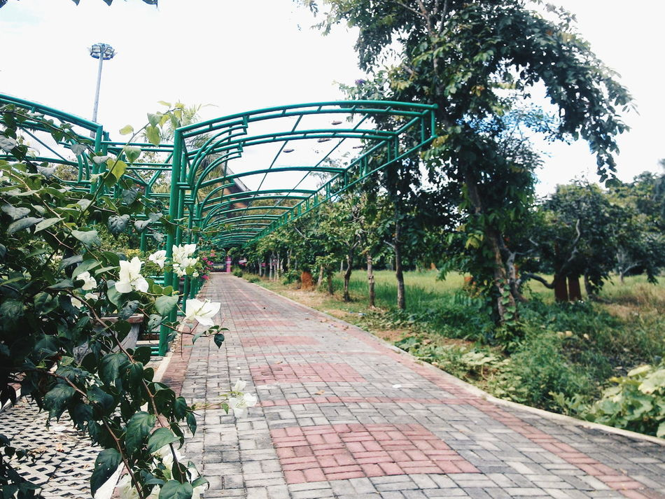 Borneo, Tenggarong. Borneoisland BorneoDiary Borneophoto_hunter VSCO Vscocam
