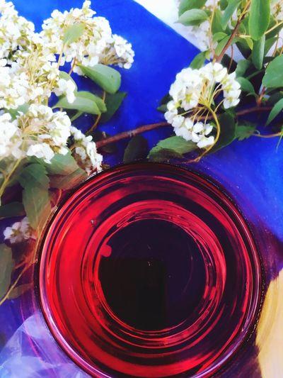 Wine Bottleofwine Glasofwine Red Glass - Material SummerNights Nature Flowerpower Holiday Visual Feast