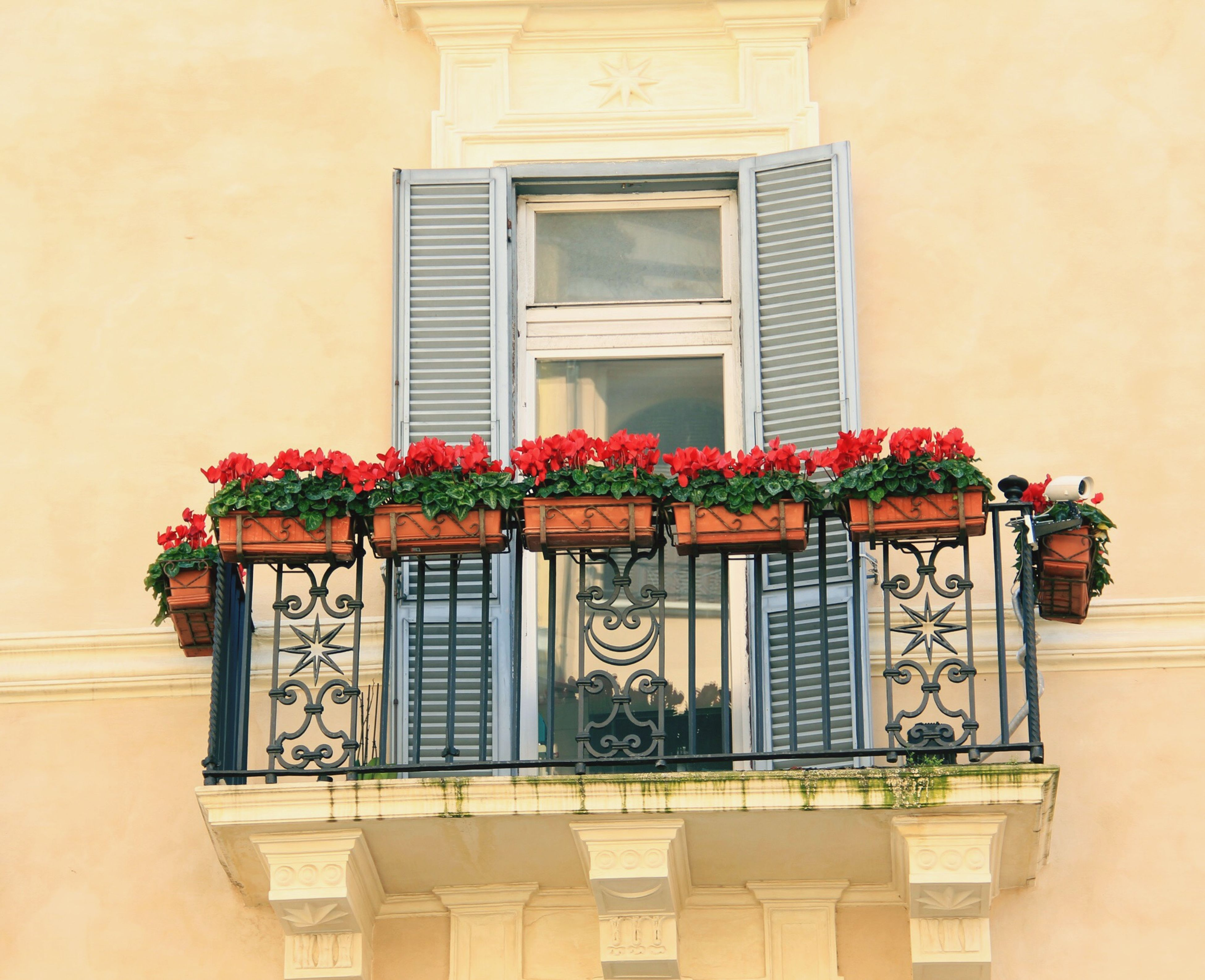 building exterior, architecture, window, built structure, potted plant, house, flower, residential building, red, plant, growth, residential structure, low angle view, closed, door, balcony, flower pot, glass - material, day, no people