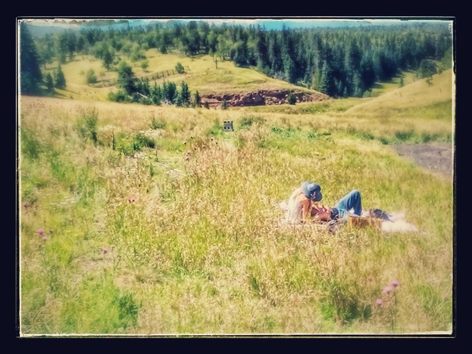 Landscape Tranquil Scene Grass Field Tranquility Scenics Beauty In Nature Concertphotographer Majestic Heaven Beauty In Nature Atmospheric Mood Freshness Love❤ Outdoors Springtime Lovemountains Mountains Mountainous View Colorado Naturelovers young Couples❤❤❤ Music Brings Us Together