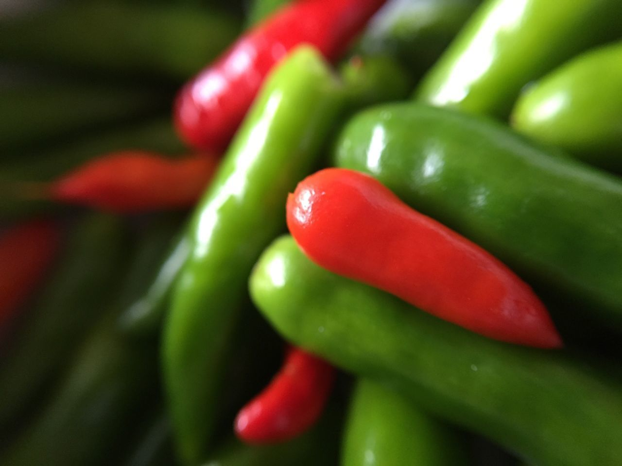 Freshness Vegetable Red Food And Drink Food Close-up Green Color Healthy Eating Chili Pepper No People Red Chili Pepper Red Bell Pepper Green Chili Pepper Backgrounds Day