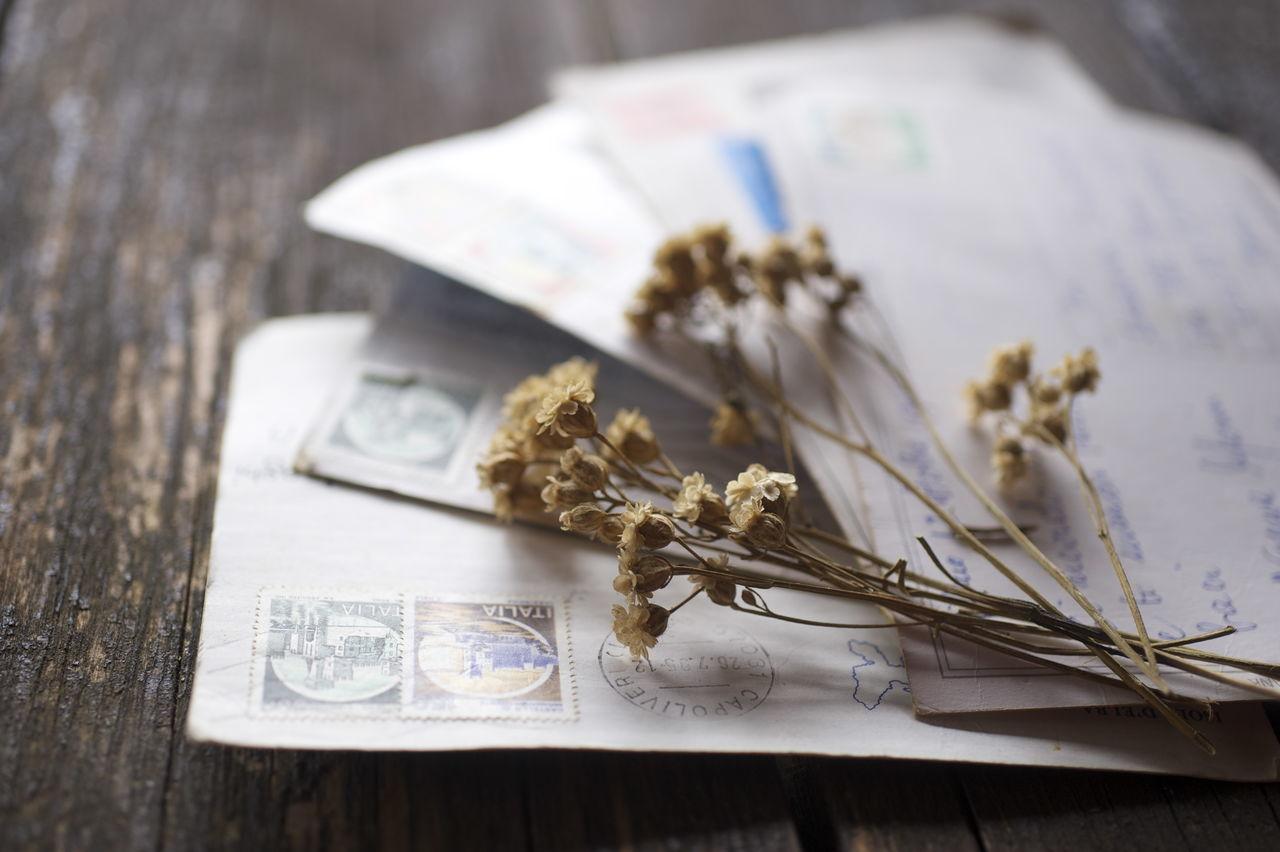 Beautiful stock photos of envelope,  Brown,  Close-Up,  Communication,  Correspondence