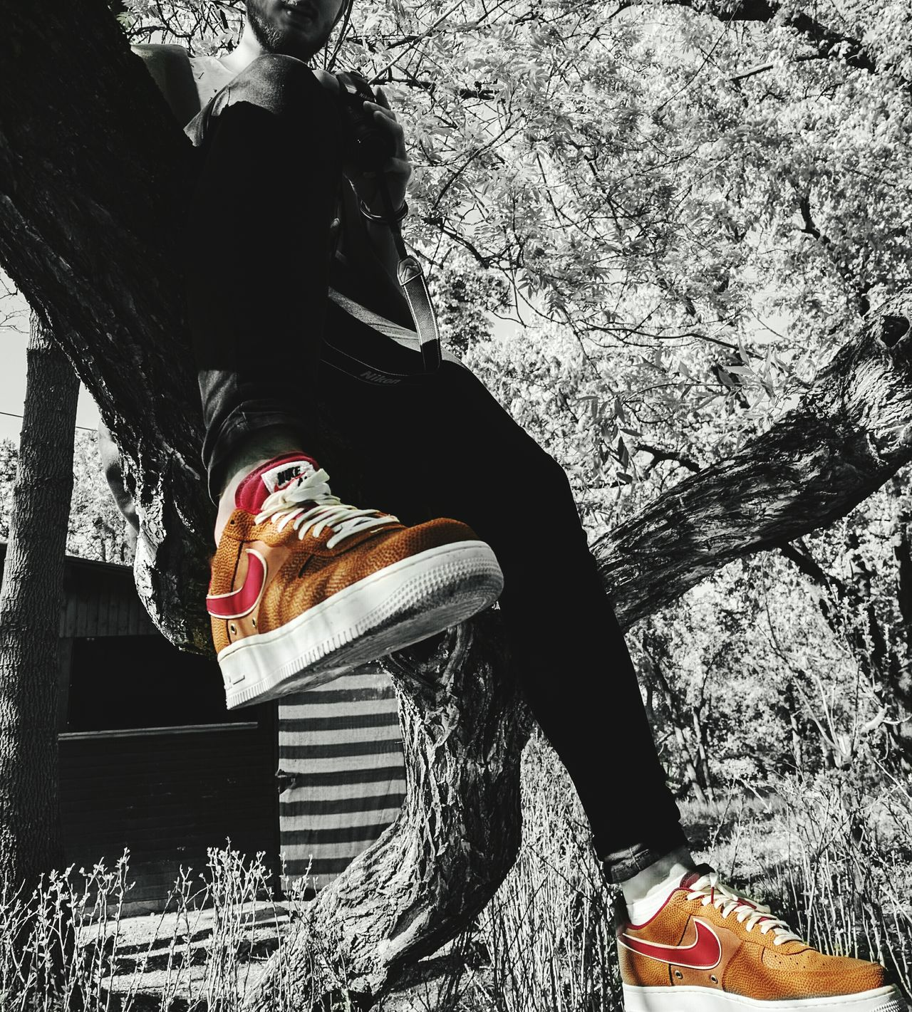 Nike Airforce1 LV8 NBA Only Women One Woman Only Adults Only One Young Woman Only Adult One Person People Young Adult Human Body Part Young Women Portrait Studio Shot Indoors  Black Background Beautiful Woman Day Backgrounds Cereal Plant Tranquil Scene Rural Scene Cloud - Sky First Eyeem Photo Wheat Freshness Scenics Break The Mold