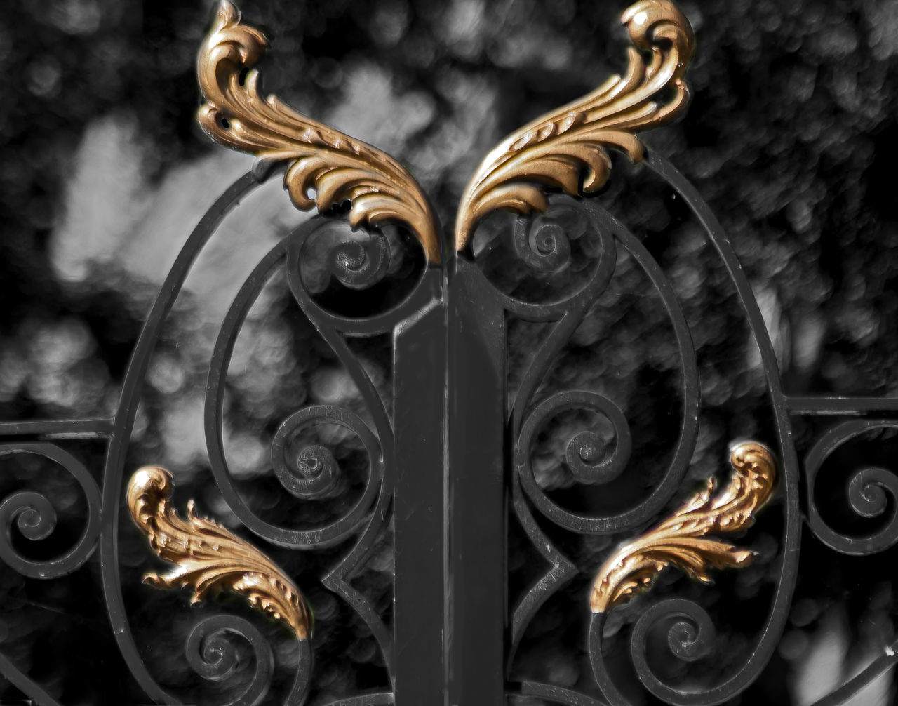 metal, gold colored, ornate, gold, close-up, wrought iron, pattern, luxury, no people, indoors, day