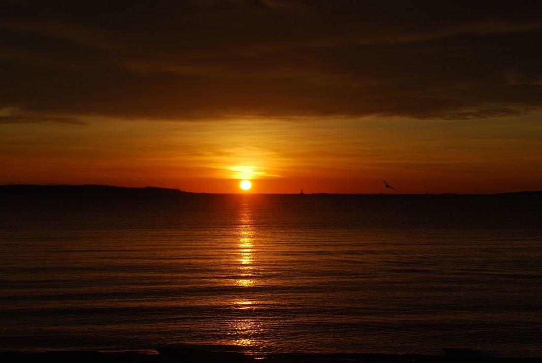 Sunrise Tranquil Scene EyeEmNewHere Sky Beach Beauty In Nature Outdoors Water Cloud - Sky Beach Sun EyeEmNewHere