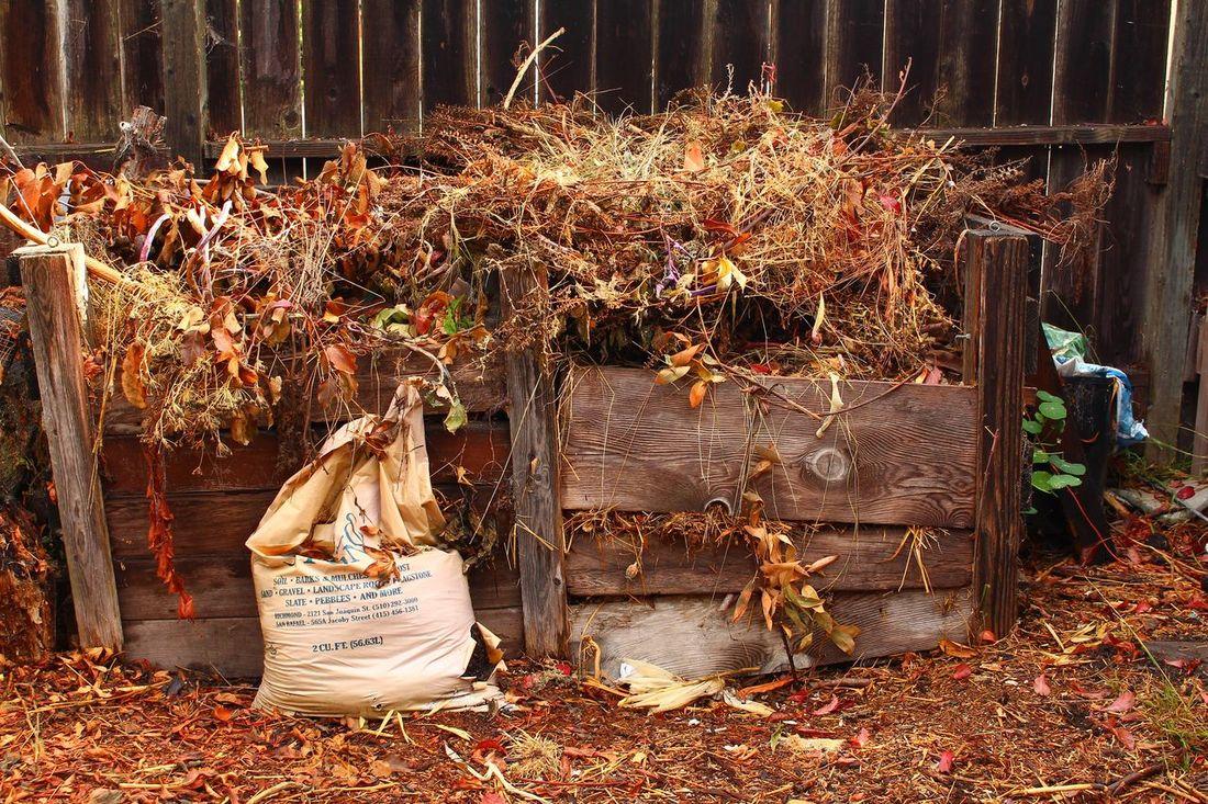 Satya. Compost Death Decomposition Grey Lifestyles Nature Rejuvenate Rejuvenating Tranquility