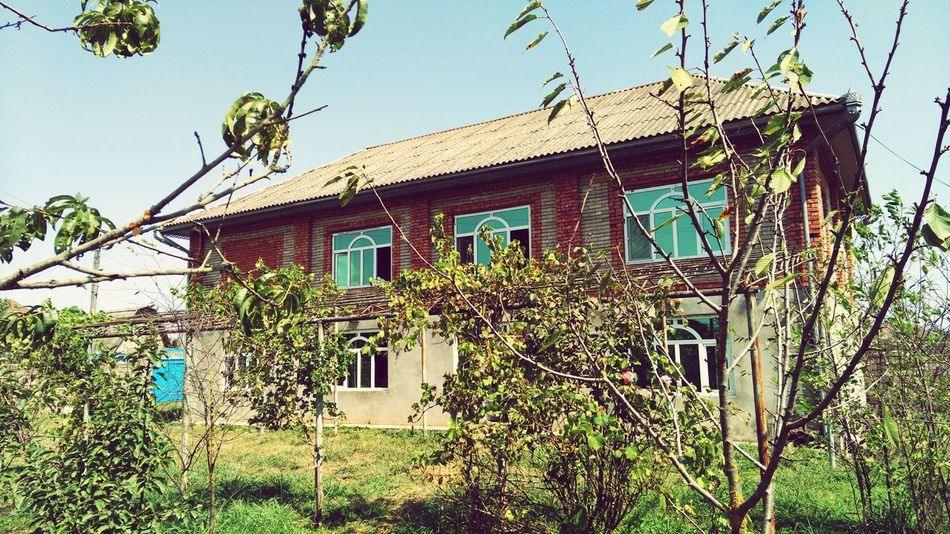 Мой дом House Azerbaijan Architecture Residential Building Window No PeopleAzerbaycan Azeri Sunny Day солнечный день домик в деревне родина Природа деревья Trees Plant Land Of Fire азербайджан Gunashli Motherland