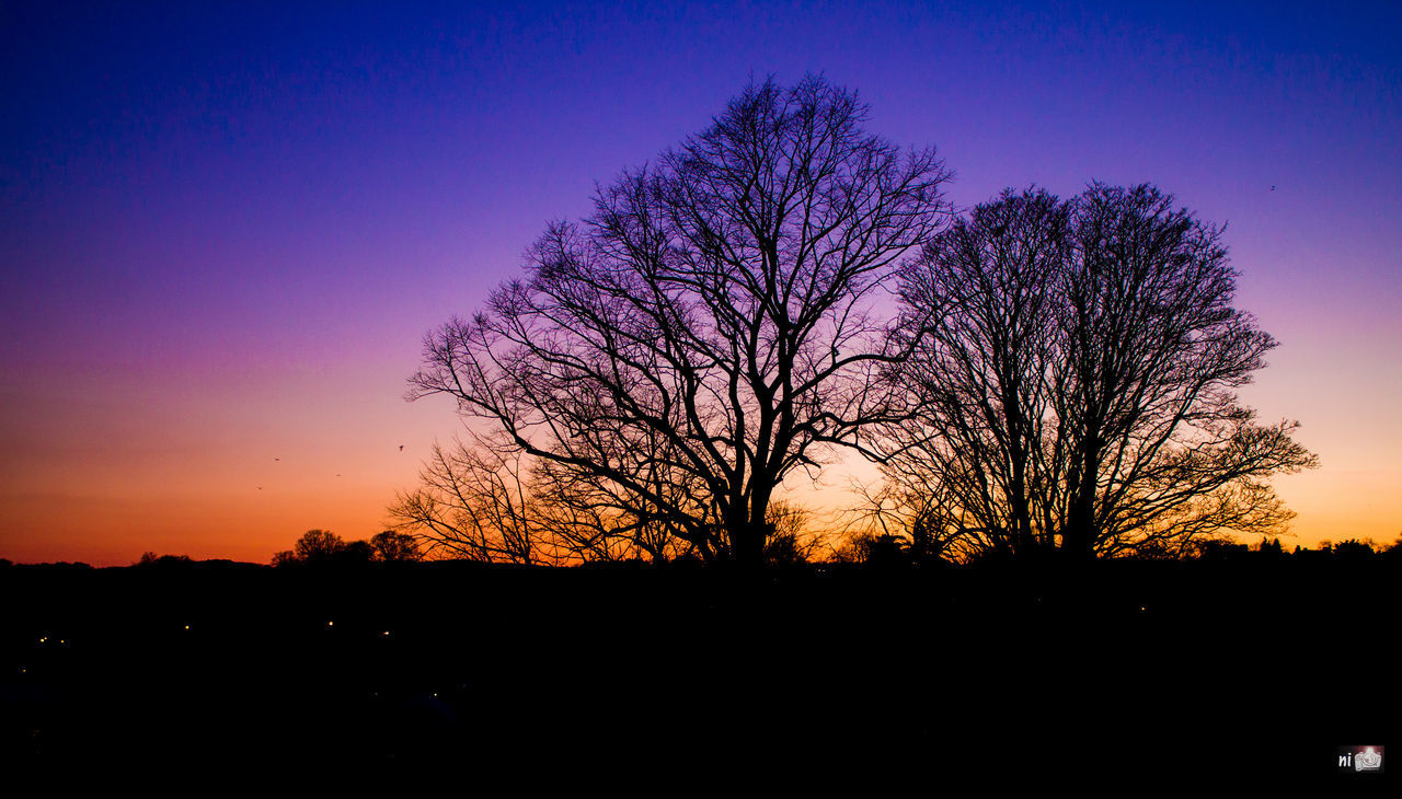 silhouette, sunset, bare tree, beauty in nature, nature, scenics, tree, tranquility, sky, tranquil scene, landscape, outdoors, blue, no people, clear sky, astronomy