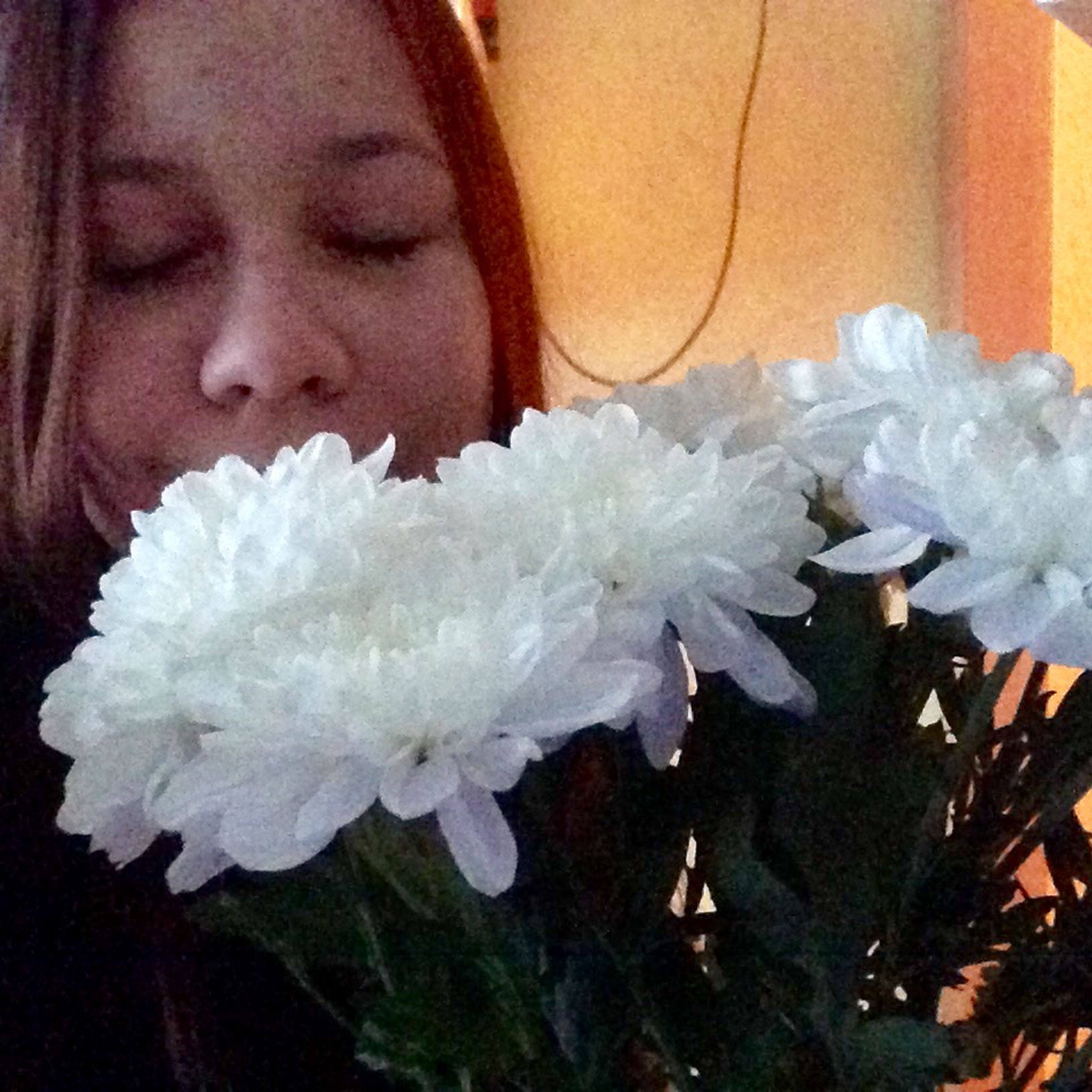 flower, indoors, fragility, freshness, close-up, white color, flower head, petal, focus on foreground, home interior, holding, person, white, rose - flower, softness, vase, single flower, blooming