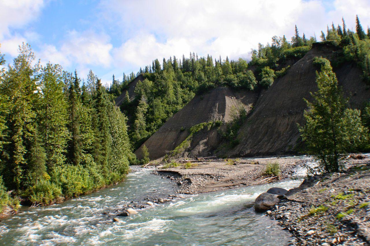 Glacial Melt Alaska Stream Nature Rushing Water Rushingwater Rocky Stream Evergreens