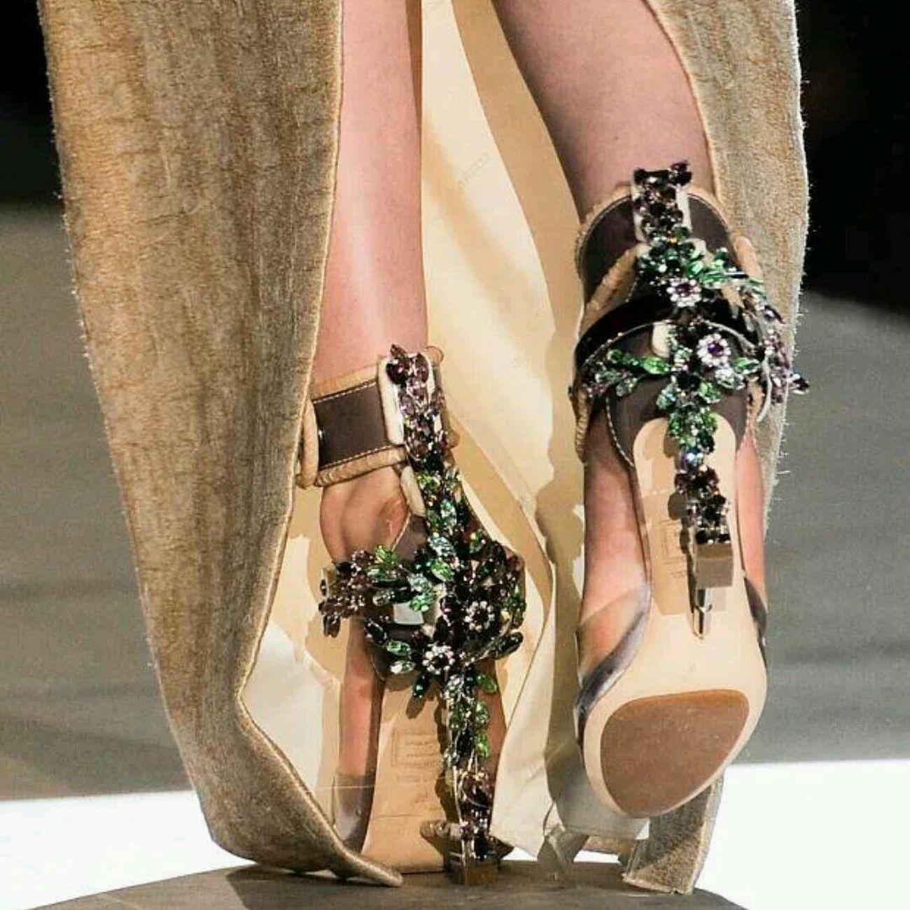 DSQUARED2 FW14 Fashion Designer
