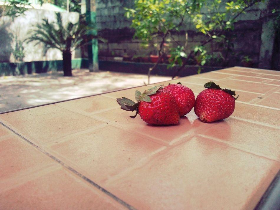Strawberry Collataa Yum