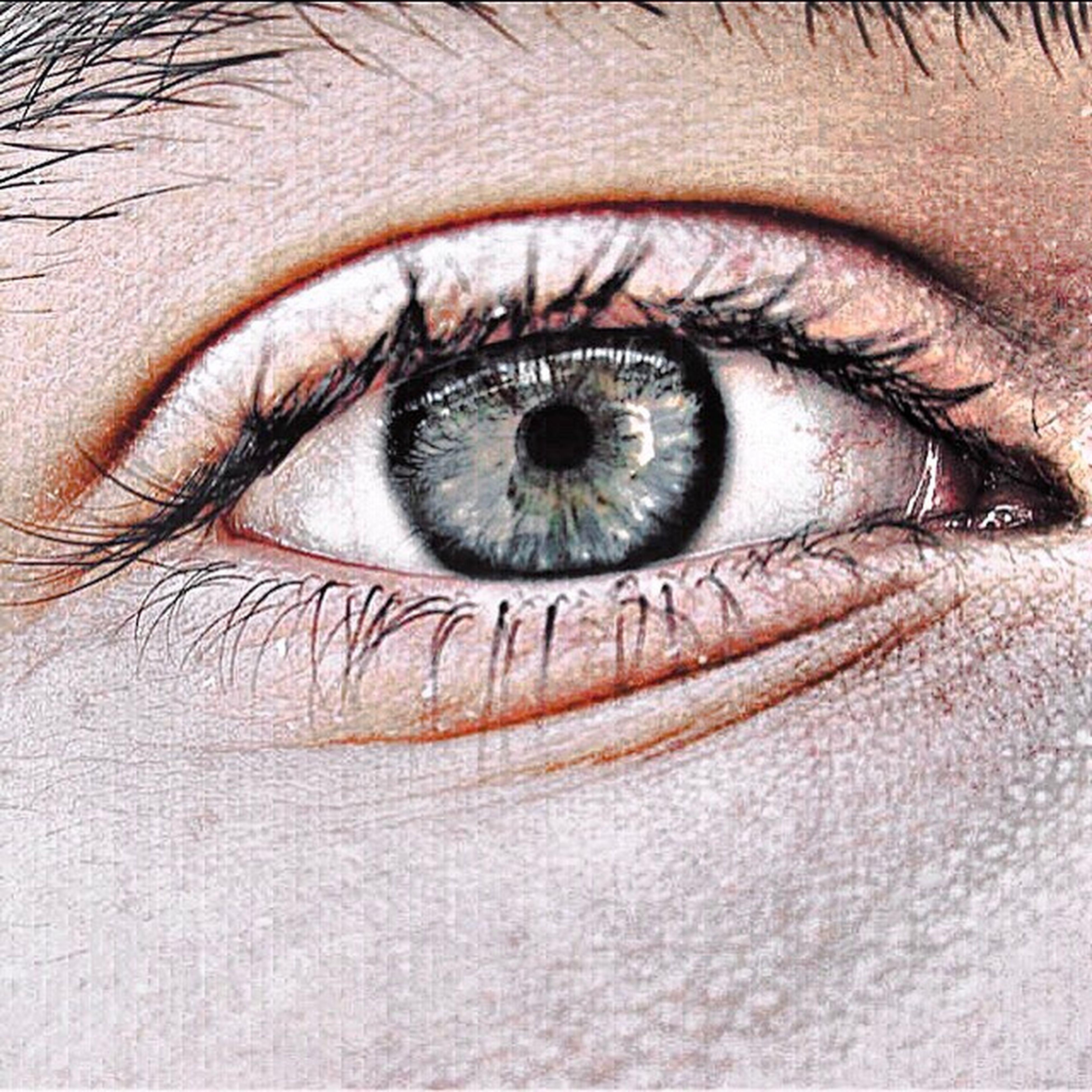 part of, human eye, eyesight, eyelash, unrecognizable person, close-up, extreme close-up, backgrounds, sensory perception, extreme close up, looking at camera, human skin, full frame, person, macro, eyeball, vision, iris - eye, focus on foreground, studio shot