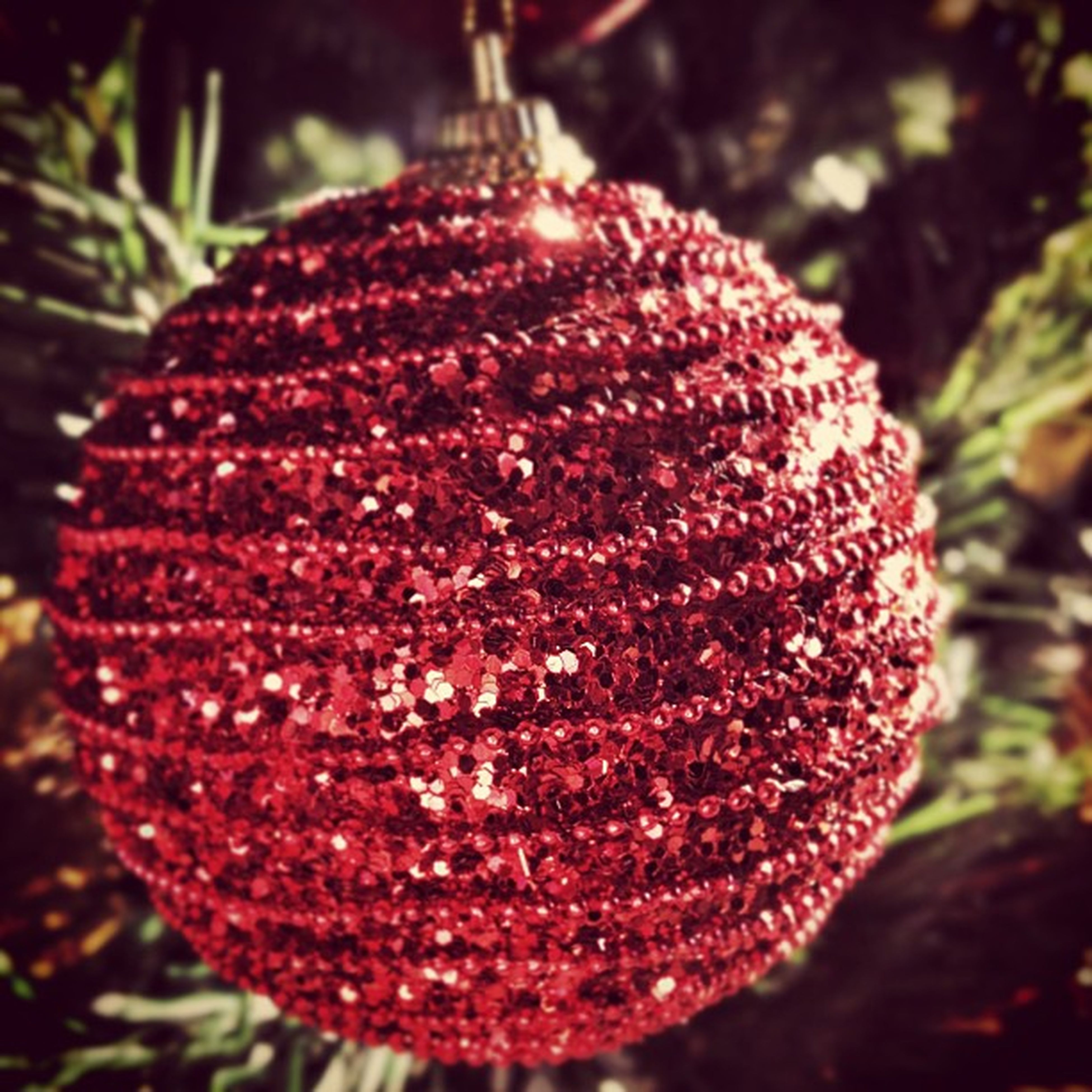 red, close-up, focus on foreground, food and drink, freshness, selective focus, hanging, tradition, food, fungus, no people, outdoors, mushroom, growth, christmas, nature, day, tree, fruit, christmas decoration