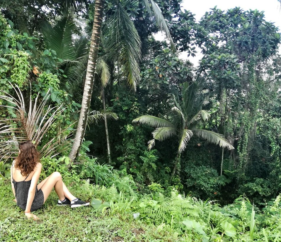 Tree Green Color Growth One Person Outdoors Day Plant Nature Sitting Women One Woman Only Young Women Adult Adults Only Only Women Pacific Islands Travel Destinations Scenics Landscape Leisure Activity Beauty In Nature Rice Terraces Young Adult People Sky