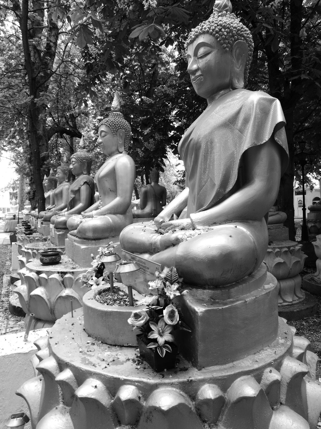 Statue Sculpture Tree Day Outdoors No People Nature Bouddha  Buddhism First Eyeem Photo HuaweiP9Photography Lovelife Lovephotography  Monochrome Photography Tranquility Nature Fragility Architecture