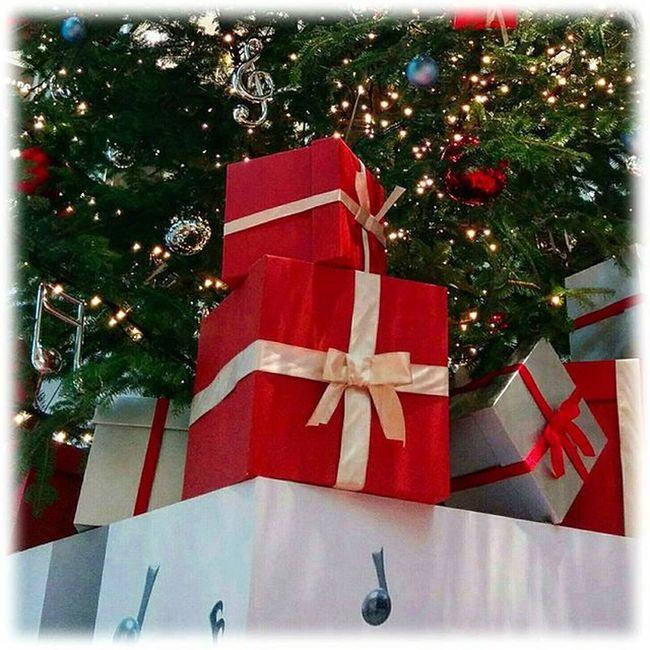 🎄 クリスマスプレゼントディスプレイ🎄🎅🎁✨Christmas gift of display ※ ※ 12月 December ディスプレイ Display 癒し Comfort 休息 Rest 安らぎ Peace Behappy Eveningwalk Tree Colors Happiness Positivity 🙀😻💃✨ View_Japan_nagoya_mitu