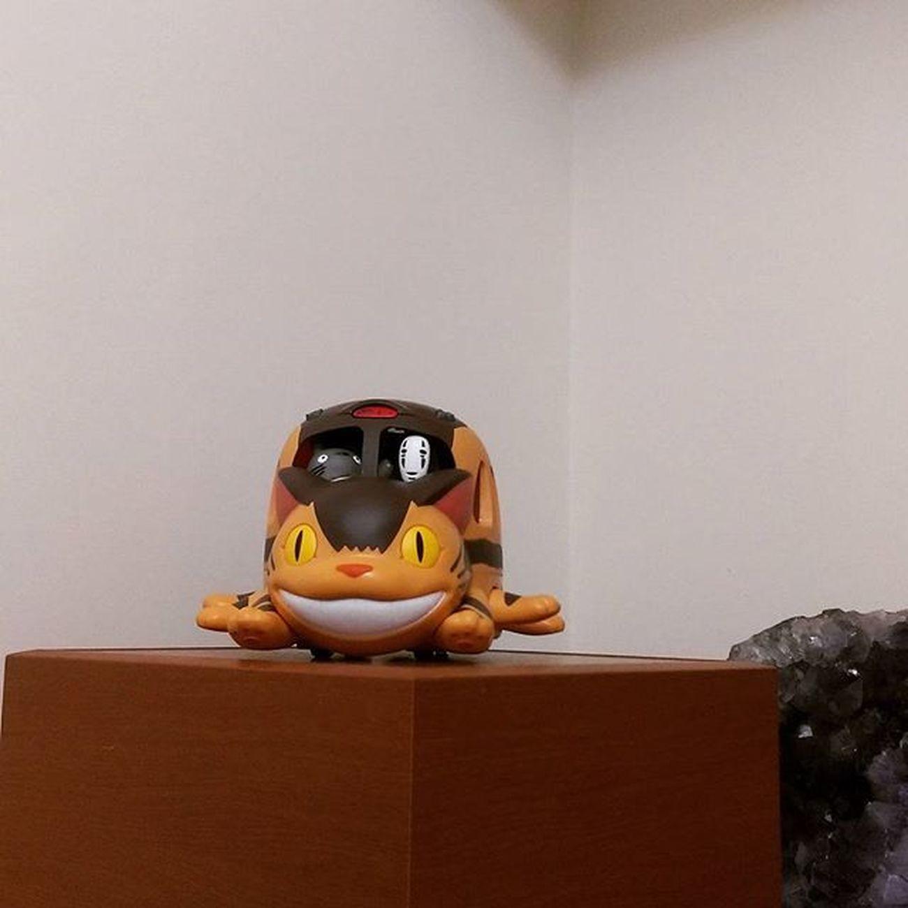 副駕駛錯棚 衝吧龍貓公車 龍貓 吉卜力 吉卜力工作室 橡子共和國信義店 橡子共和國