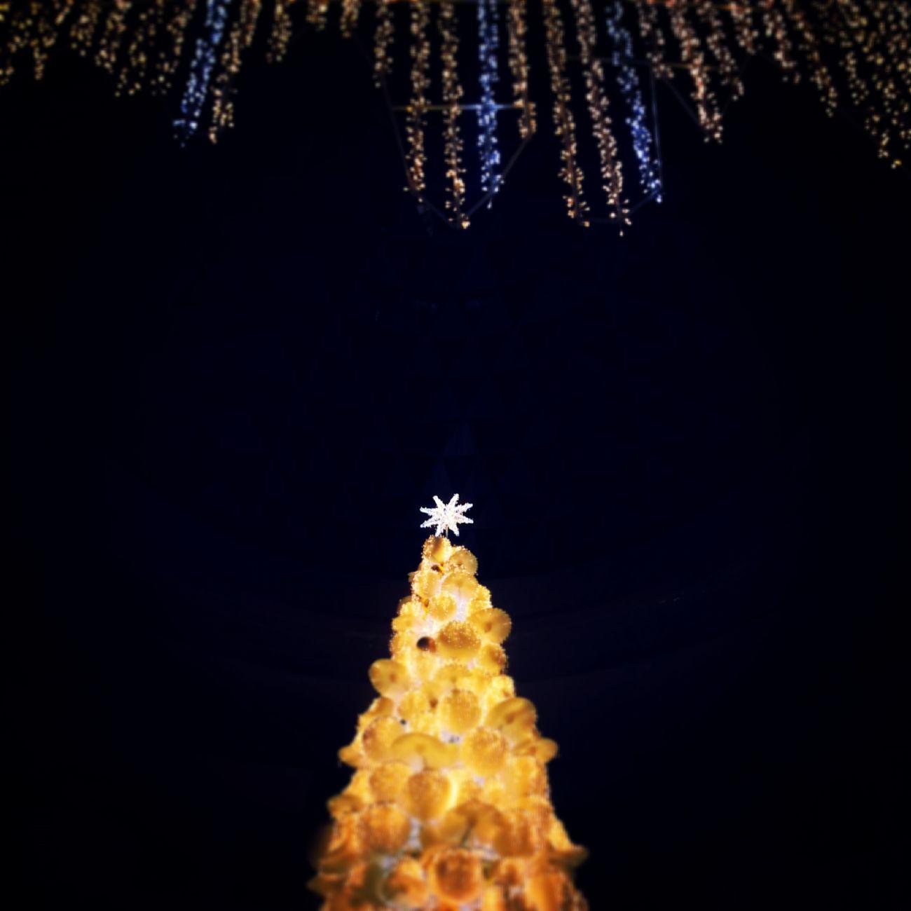 크리스마스 크리스마스트리 Christmas Tree 올해도 어느새 크리스마스가 다가오는구나