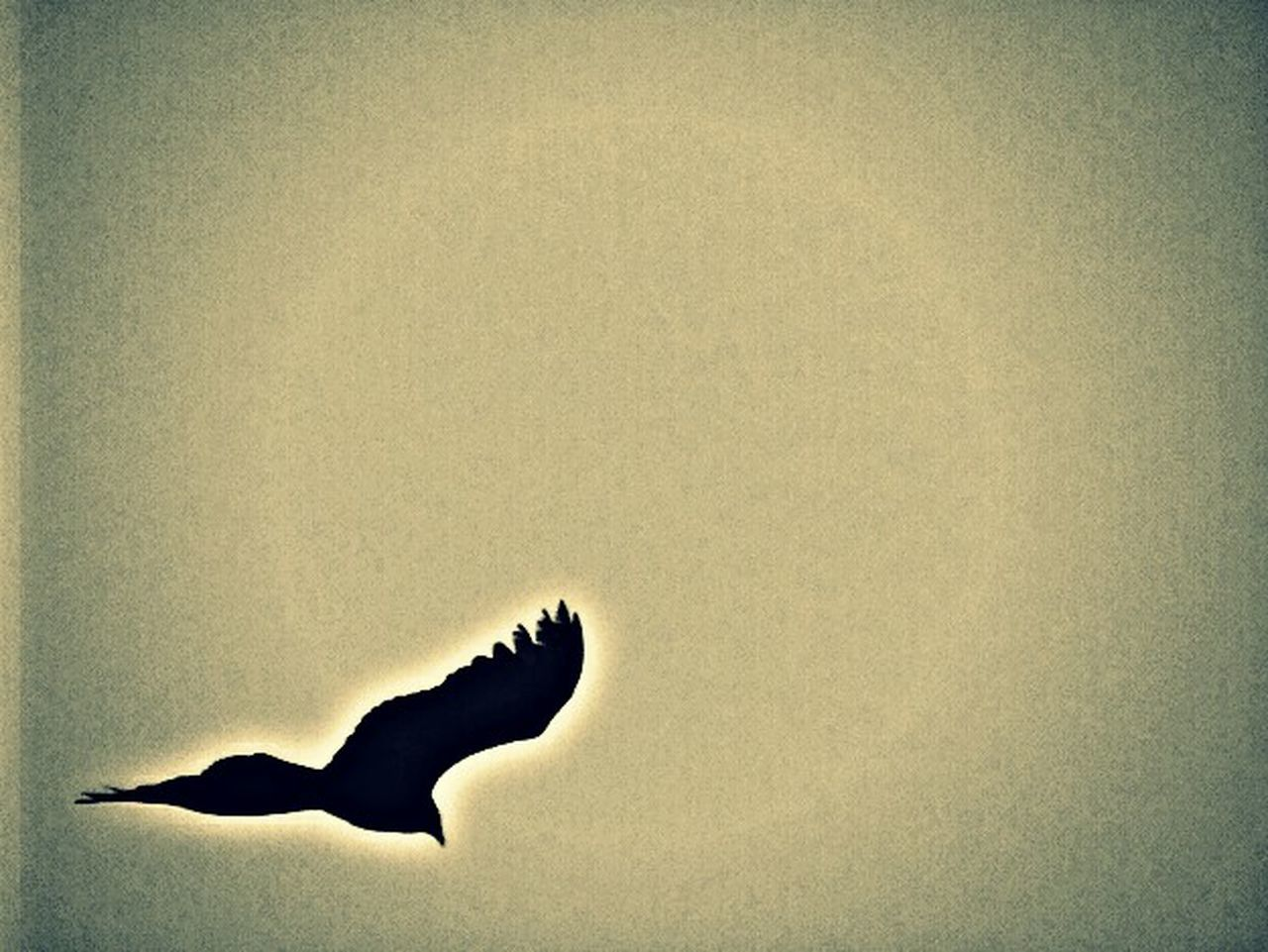copy space, one animal, animal themes, silhouette, no people, animals in the wild, day, outdoors, nature, bird, close-up
