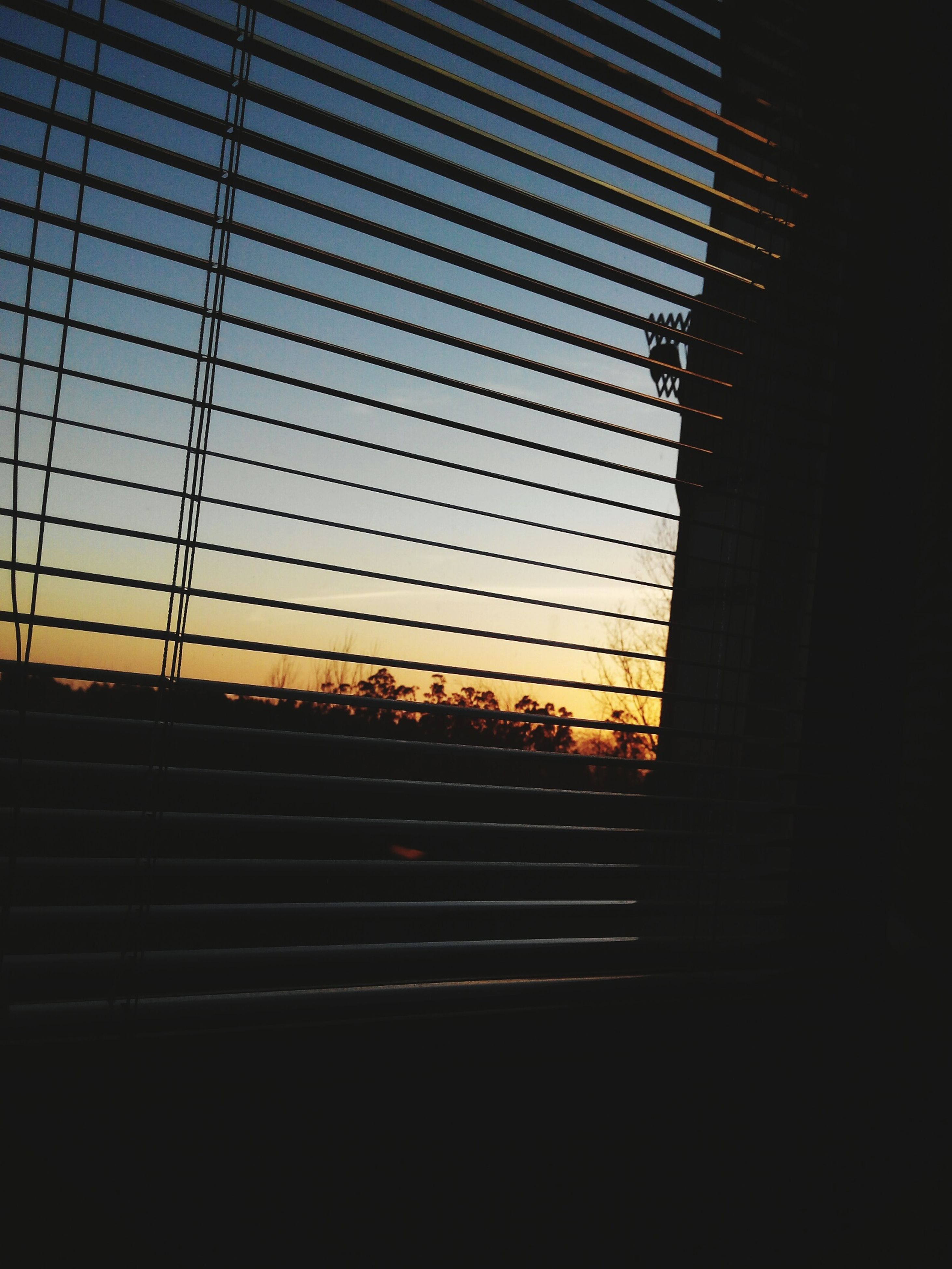 sunset, silhouette, window, orange color, indoors, dark, built structure, architecture, sky, glass - material, illuminated, no people, building exterior, pattern, transparent, modern, blinds, building, sunlight, city