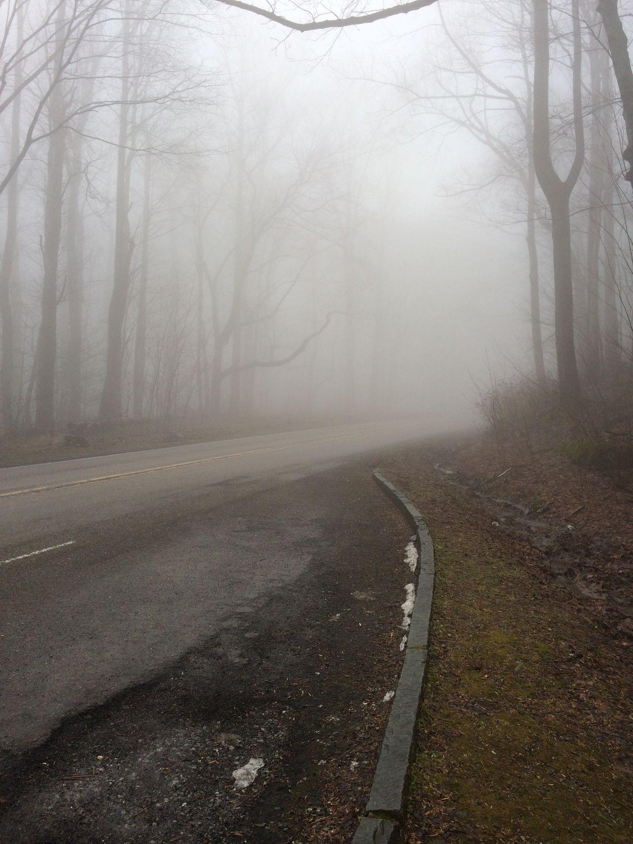 Fog Snow Road