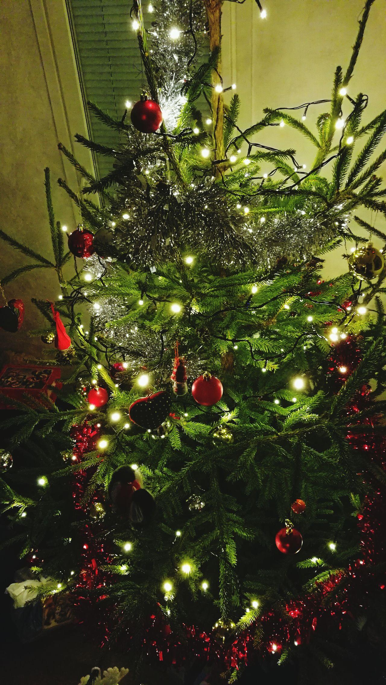 MerryChristmas Happy Holidays! Christmas Tree Christmastime Hyvää Joulua Joululahjat Family Family Time Love Love Is In The Air Feliznavidad