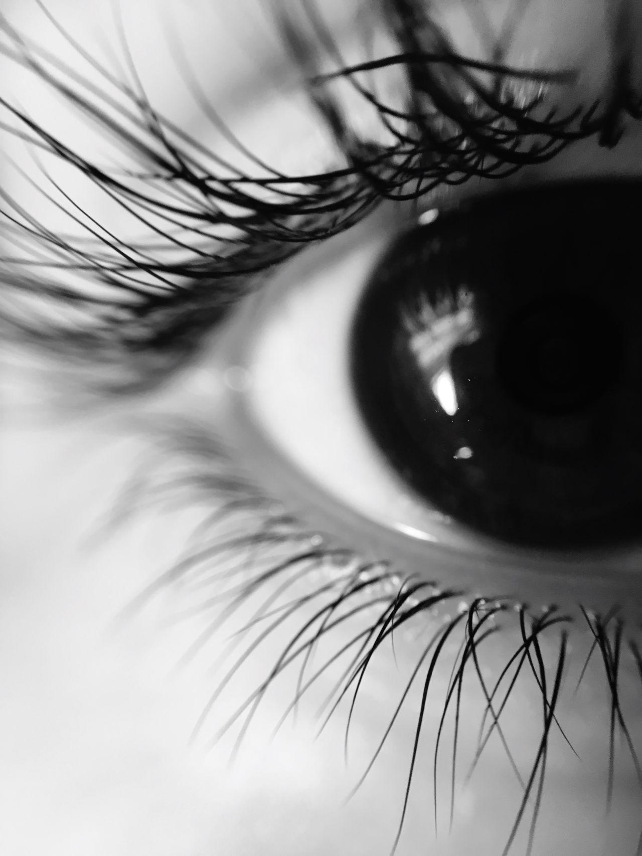 Me eye with a macro lens Macro Photography EyeEmNewHere