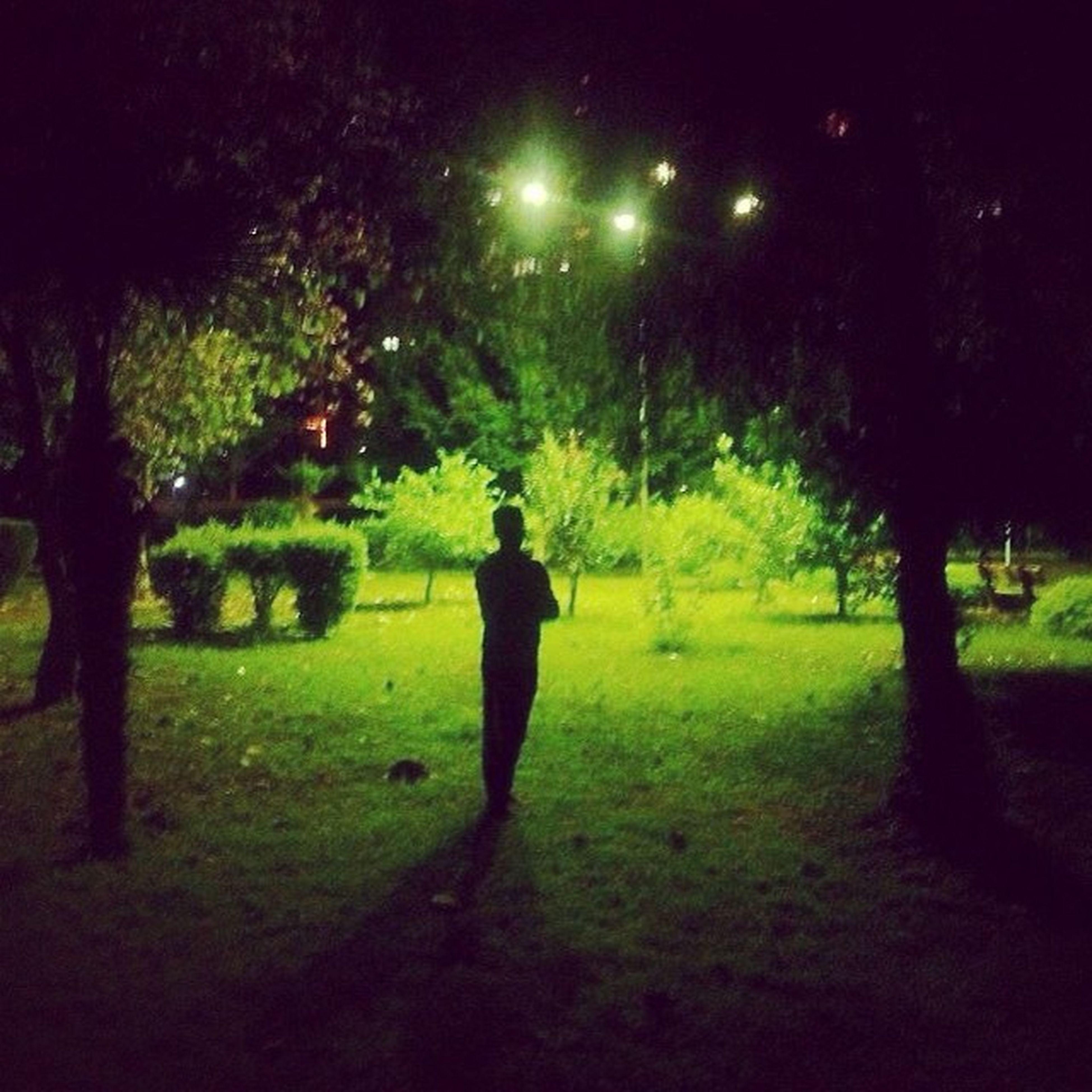 Night Amazing Natural