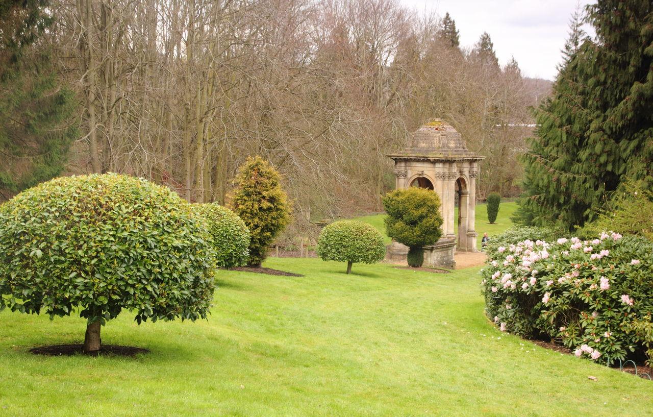 Scenic View Of Garden