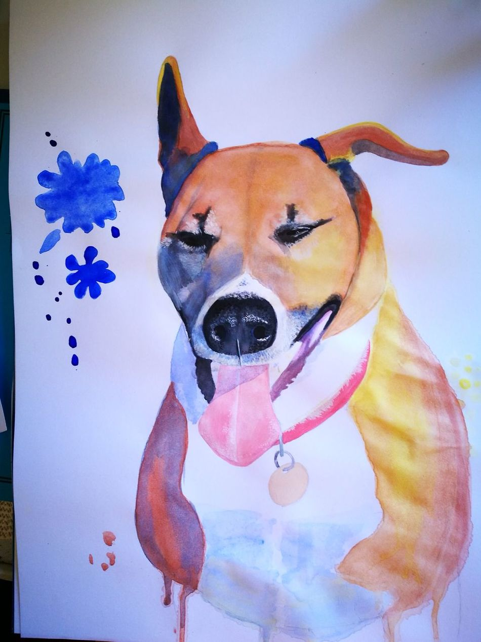 Water painting of my lovely boy RIP Pets Portrait Dog