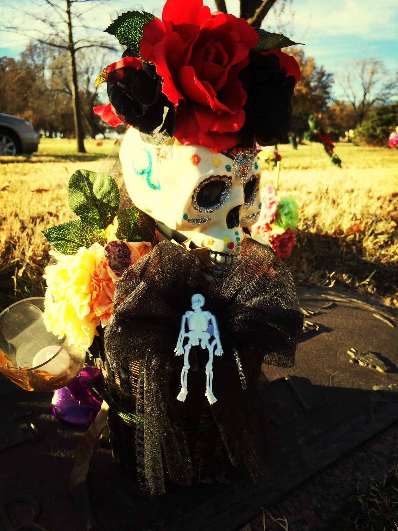 from Day of the Dead (Nov 1)