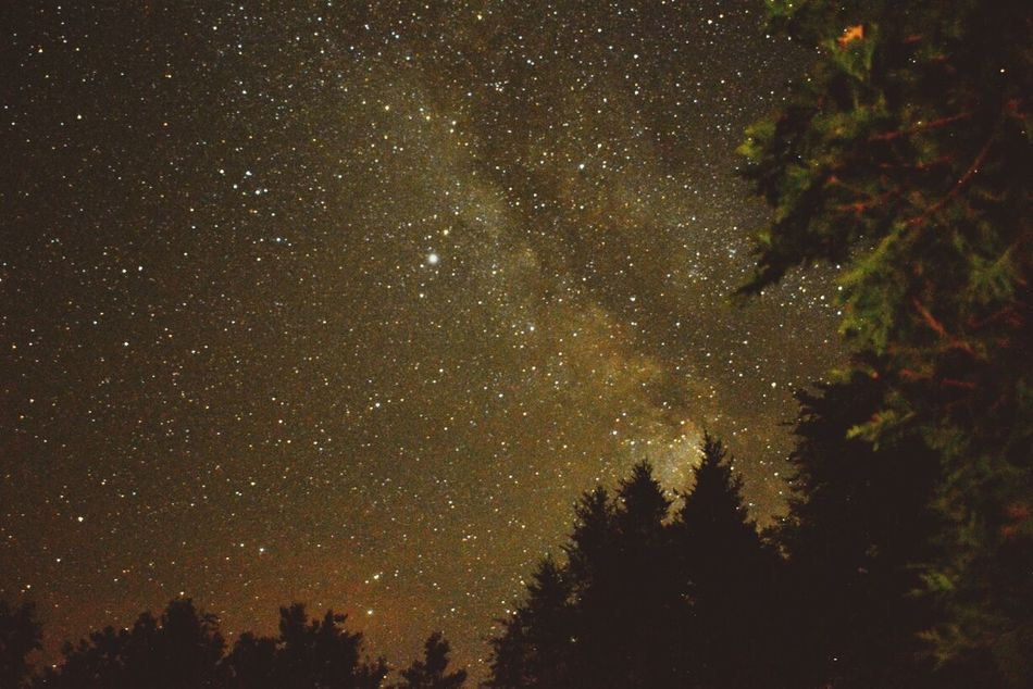 Beautiful stock photos of stars, Beauty In Nature, Clear Sky, Close-Up, Cold Temperature