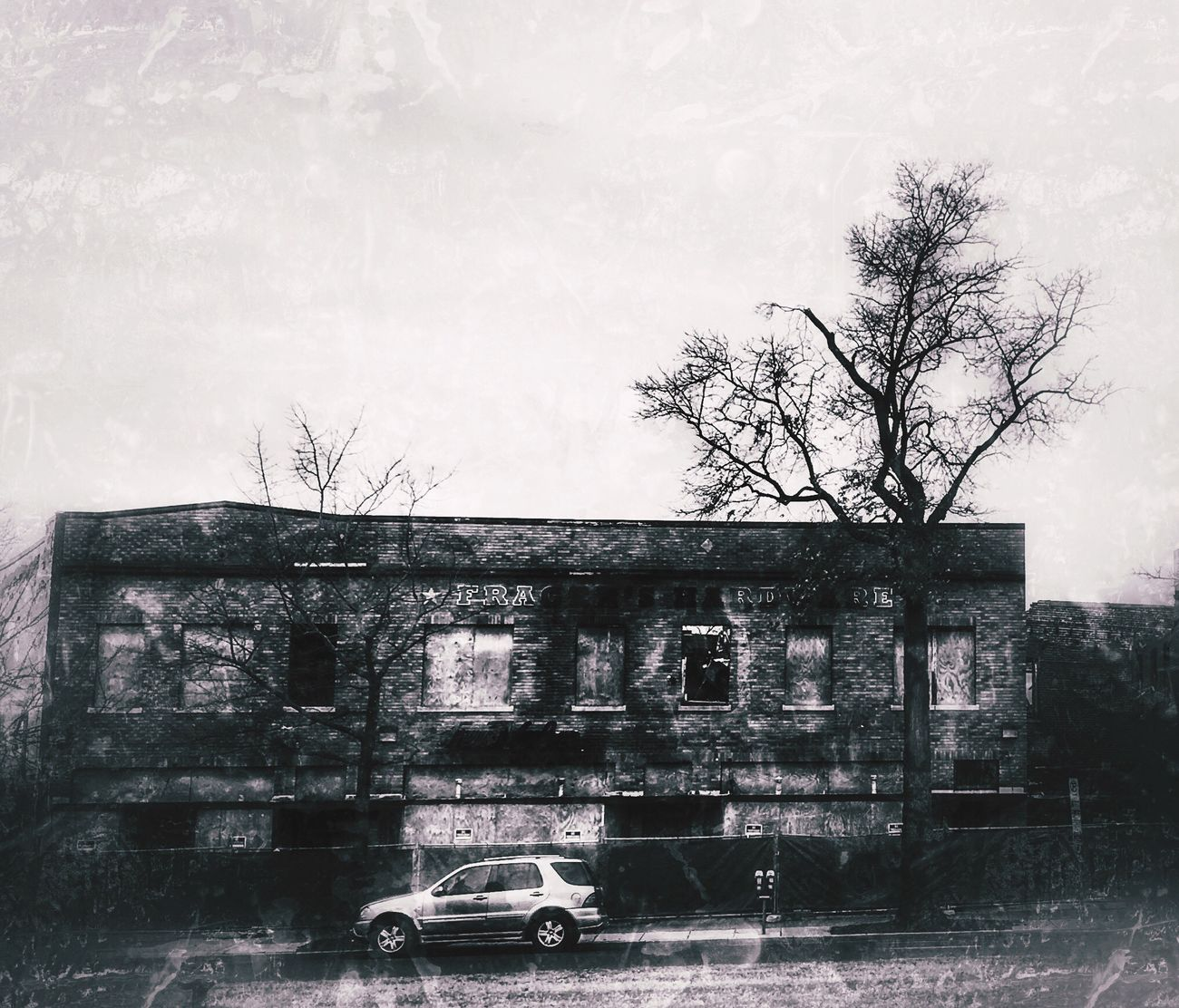 After the fire Tree Architecture Monochrome Bw_collection Bnw Streetphotography