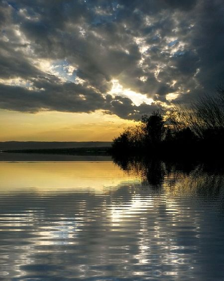 Reflection Water Tree Nature Sunset Sky Beauty In Nature Tranquility Scenics Cloud - Sky Outdoors Tranquil Scene No People Day Sunset_collection Landspace Mothernature Natureporn Nature Photography Horizon Over Water Reflection Yellow Tree Sunrise