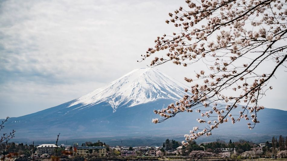 Mountain Beauty In Nature Nature Sky Snowcapped Mountain Snow Landscape Outdoors No People Tranquility Cloud - Sky Cold Temperature Fujimountain Sakura
