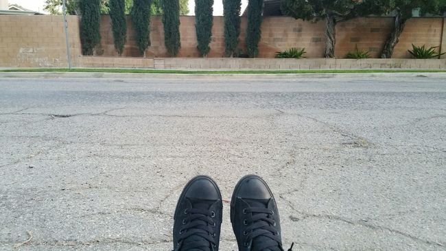 Outside Converse All Star Converse New Shoes Front Yard Southern California Los Angeles, California West Hills