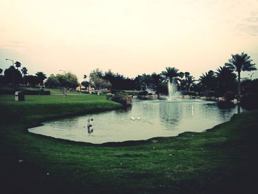 lake at Saudi Aramco by Mashael AlAskar- مشاعل العسكر